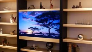 Panasonic invisible TV, smart TV, new launch, India